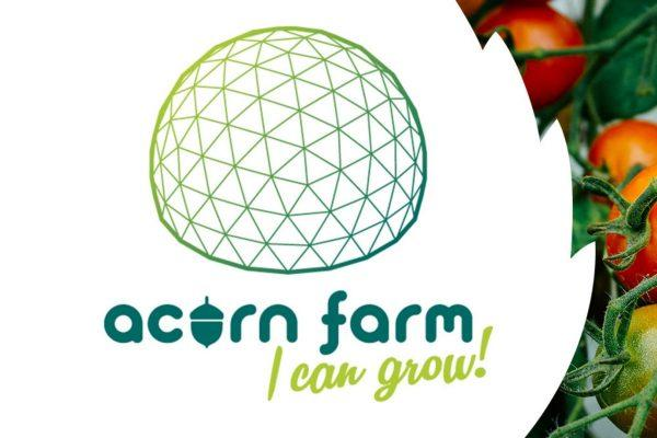 Acorn Fund, sowing seeds of change in Derry and Strabane